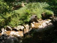 Снимки от Згориград и Врачанския Балкан - Снимки от Згориград и Врачанския Балкан