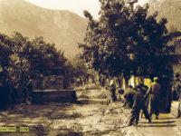 История на село Згориград - История на село Згориград